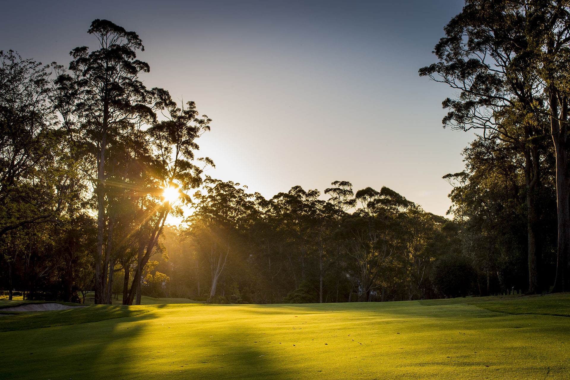 0062_pymble_golf_27thsept_2013